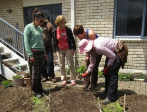 Blitz #5, Sue the task leader demos sowing seeds in the new beds