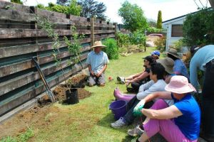 Tree planting workshop
