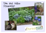 We use diversity in our gardens to create ecological stability. Mixed plantings have less pests. We value and welcome everybody that joins us!