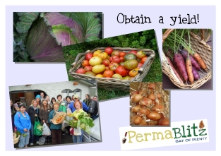 Our number one priority is to strive for obtaining productive yields. Blitzed gardens produce tangible results!