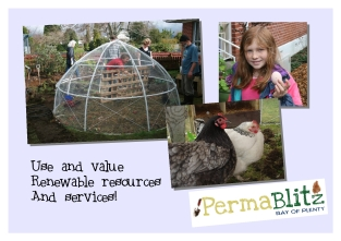 We use natural resources to our advantage. Chickens can cultivate vege beds, remove pests and add fertility if designed into our home garden system.